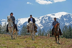 From Bansko: Horse Riding Experience