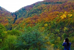 From Bansko: Rila Monastery Half-Day Tour