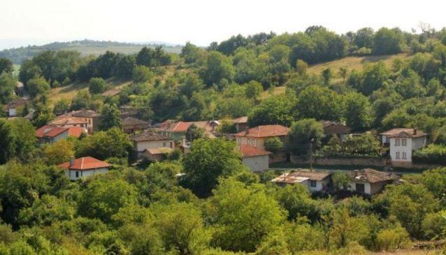 Kostenkovtsi