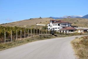 Melnik Wine Tour