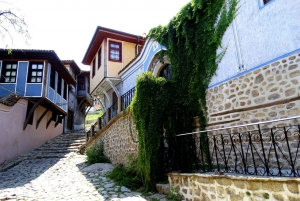 Plovdiv Private Day Trip with Traditional Lunch from Sofia