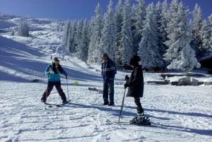 Private Day Trip to Vitosha Mountain: Winter Sports and Spa