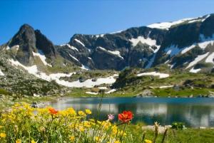 Seven Rila Lakes Hiking Day-Tour from Sofia