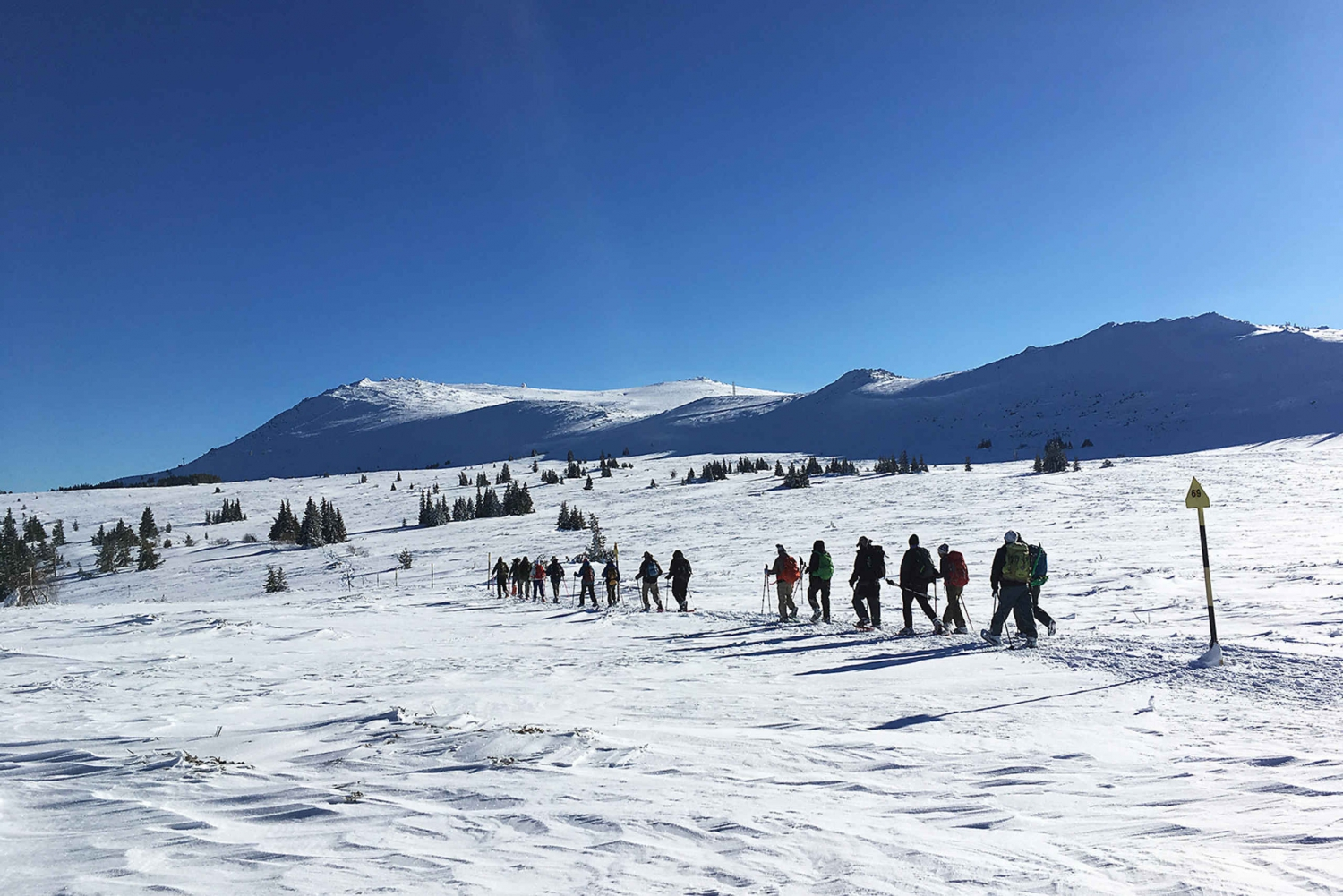 Sofia: Black Peak-Vitosha Mountain Snowshoeing Day Trip
