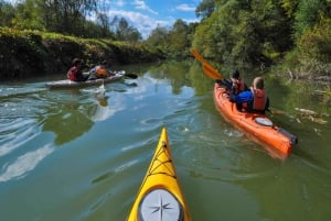 Varna: Kamchia River Kayaking Day Tour