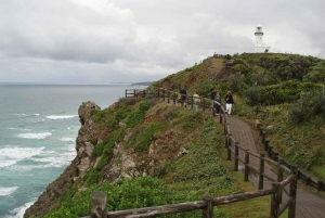 Brisbane: Full-Day Byron Bay Tour