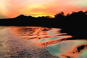 Brunswick River: Sunset Eco Rainforest River Cruise
