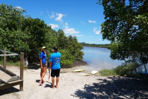 Byron Bay: 2.5-Hour Stand Up Paddle Board Lesson