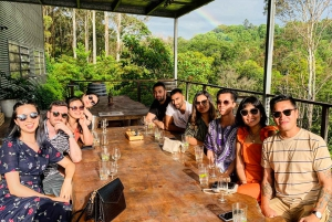 Byron Bay: Full-Day Brewery and Distillery Tour with Lunch