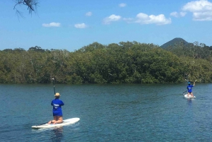 Byron Bay Stand Up Paddle Board Lesson & Return Transfers