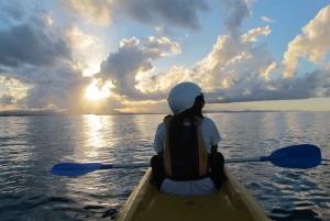 Sea Kayak Tour with Dolphins & Turtles