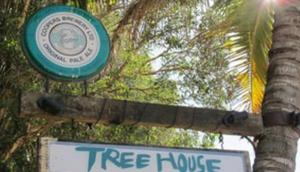 Treehouse on Belongil