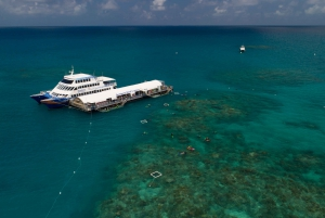 Arlington Reef Pontoon with Snorkeling
