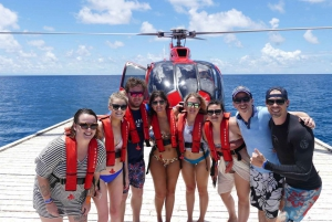 Barrier Reef Snorkeling with Helicopter, Cruise or Both