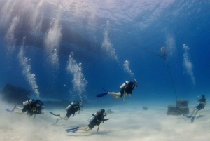 Cairns: 4-Day PADI Open Water Course