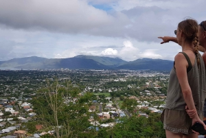 Cairns: Afternoon Tour with Evening Dinner Cruise