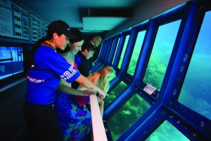 Cairns: Helicopter and Outer Reef Packages