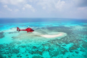 Cairns: Helicopter Ride, Reef Cruise and Kuranda