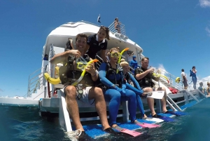 Cairns: Outer Great Barrier Reef Full-Day Tour with Lunch