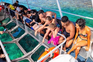 Cairns: Outer Great Barrier Reef Pontoon with Activities