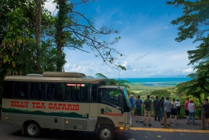Cairns: Reef Helicopter Flight and Daintree Rainforest Tour