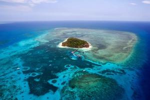 Cairns: Reef & Port Douglas Scenic Flight