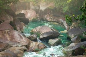 Cairns: Wooroonooran Rain Forest Full-Day Safari