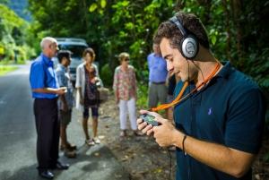 Cape Tribulation, Daintree and Mossman Gorge Day Tour
