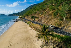 Daintree & Cape Tribulation Small Group 4WD Tour