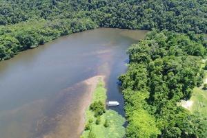 Daintree Rainforest Wildlife Experience Cruise