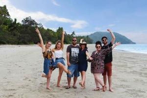 Daintree Wilderness & Cape Tribulation Full-Day Tour