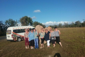 From Cairns: Atherton Tablelands Food and Wine Tasting Tour
