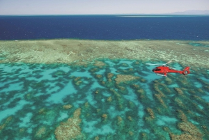 From Cairns: Great Barrier Reef and Rainforest Scenic Flight