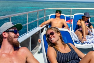 From Cairns: Great Barrier Reef Snorkeling Experience