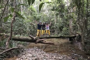 From Cairns: Small Group Quad Bike Rainforest Tour