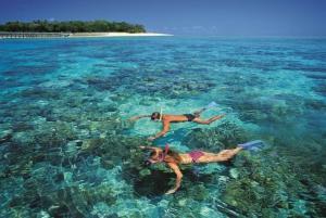 From Green Island Reef Catamaran Cruise