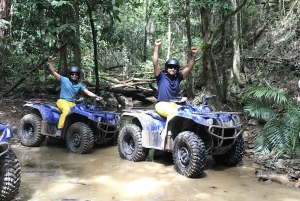 From Small Group Quad Bike Rainforest Tour