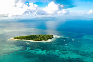 Great Barrier Reef and Rainforest Helicopter Tour