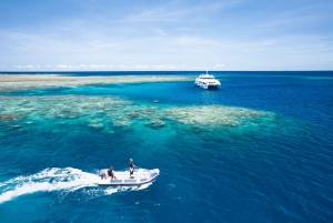 Great Barrier Reef Overnight Snorkel and Dive Trip