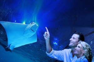 Guided Twilight Tour of the Aquarium with Dinner