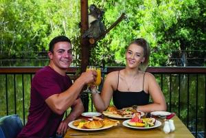 Hartley's Crocodile Adventures: Breakfast with Koalas