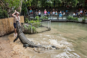 Hartley's Crocodile Adventures Visit with Transfer