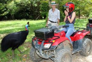 Kuranda: 1-Hour Rainforest ATV Tour