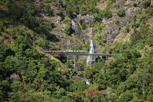 Kuranda Half Day Tour from Cairns