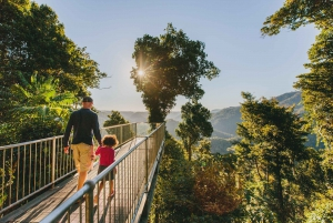 Paronella Park and Mamu Tropical Skywalk Ticket Combo