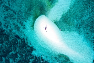 Private Sand Cay Experience with Scenic Reef Flight