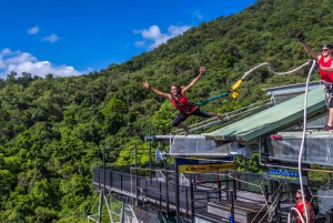 Rainforest Bungee Jump and Giant Swing