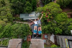 Rainforest Bungy Jump