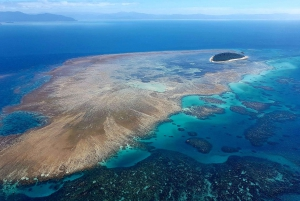 Reef Flight, Skyrail & Kuranda Scenic Rail Combo