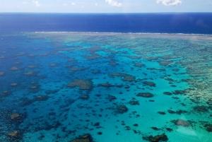Reef & Port Douglas Scenic Flight